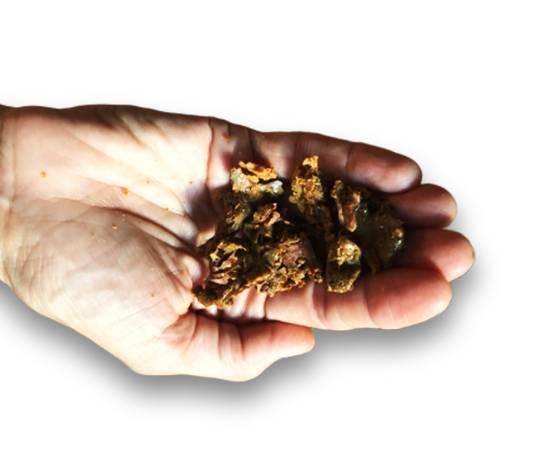 Miellerie saveurs de miel propolis Perpignan 66
